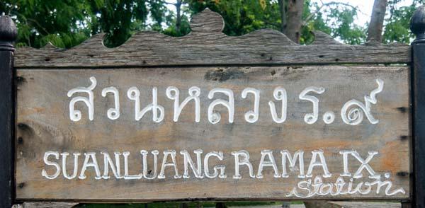 Jardin-Rama-9-Bangkok-246
