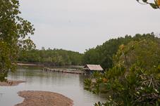 Phuket-081