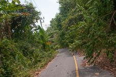 Phuket-097