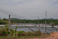 Phuket-105